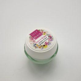 Crème de jour à l'huile d'argan H. de figue de barbarie